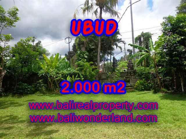 Land for sale in Ubud, Fantastic view in Ubud Center Bali – TJUB367