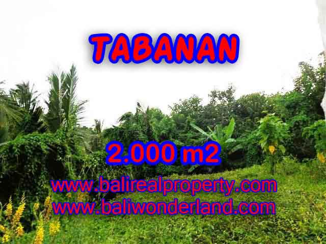 Fantastic Land for sale in Tabanan Bali, Commercial area in Tabanan Selemadeg– TJTB099