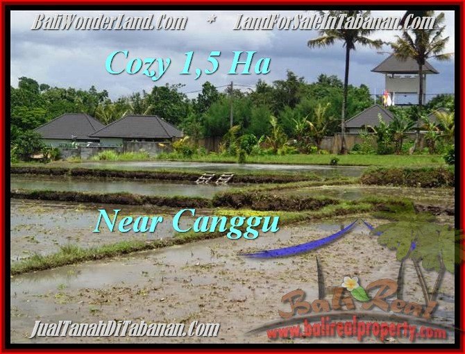Magnificent 15,000 m2 LAND FOR SALE IN TABANAN BALI TJTB196