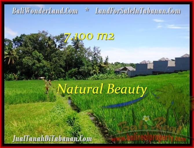 FOR SALE Exotic 7,100 m2 LAND IN TABANAN TJTB197