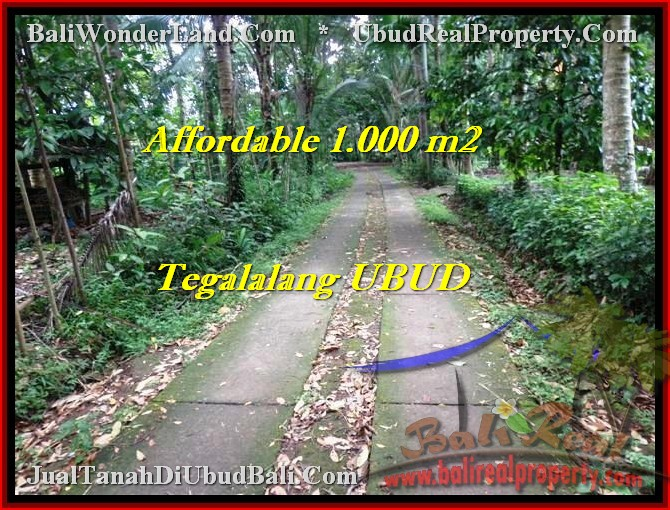 Affordable PROPERTY Ubud Tegalalang BALI LAND FOR SALE TJUB467