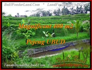 Affordable 400 m2 LAND SALE IN UBUD TJUB483