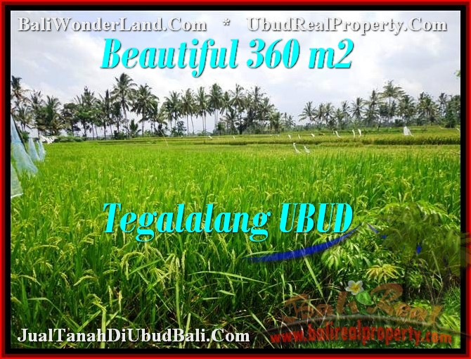 FOR SALE Affordable PROPERTY LAND IN Ubud Tegalalang BALI TJUB482
