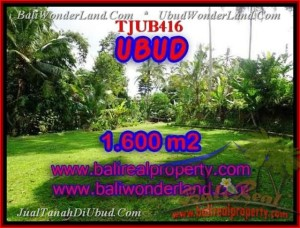 FOR SALE Magnificent PROPERTY 1,600 m2 LAND IN UBUD BALI TJUB416