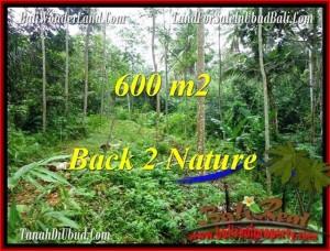 Affordable LAND IN Ubud Tampak Siring BALI FOR SALE TJUB493