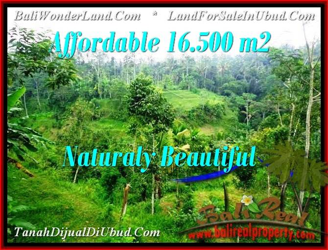 LAND FOR SALE IN Ubud Tampak Siring BALI TJUB494