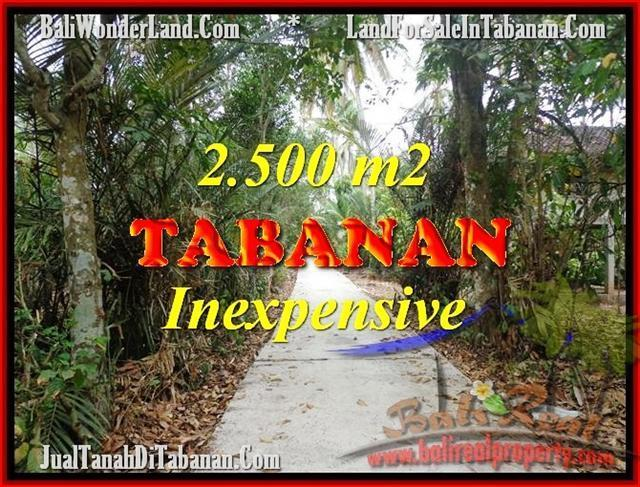 Beautiful TABANAN BALI 2,500 m2 LAND FOR SALE TJTB160