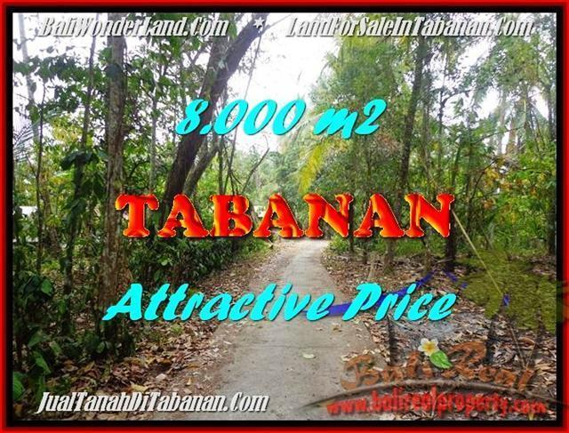 Magnificent 8,000 m2 LAND IN TABANAN BALI FOR SALE TJTB161