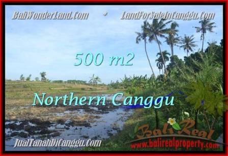 FOR SALE LAND IN CANGGU BALI TJCG181