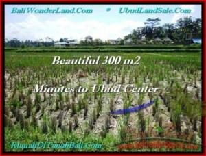 300 m2 LAND SALE IN UBUD TJUB500