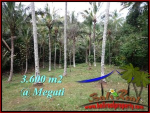 Exotic LAND IN TABANAN BALI FOR SALE TJTB211