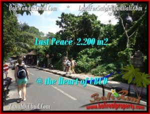 Affordable PROPERTY 2,200 m2 LAND SALE IN UBUD BALI TJUB509