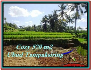 Beautiful PROPERTY 570 m2 LAND IN Ubud Tampak Siring FOR SALE TJUB511