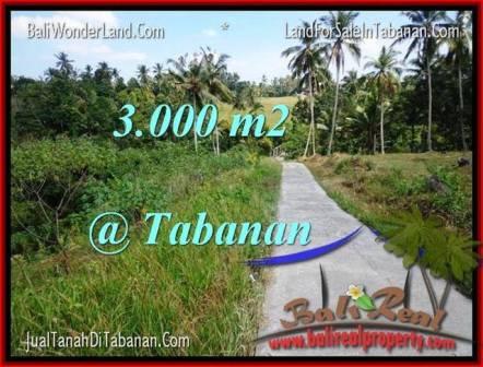 Exotic PROPERTY 3,000 m2 LAND SALE IN TABANAN BALI TJTB205