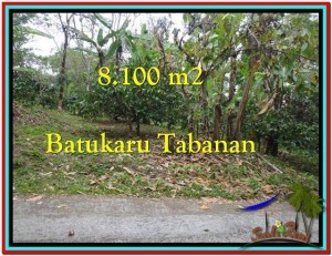FOR SALE Exotic PROPERTY 8.100 m2 LAND IN TABANAN BALI TJTB212
