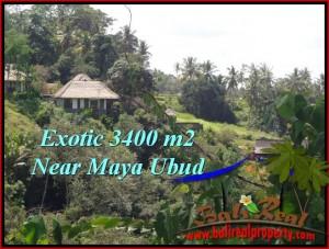 Affordable Ubud Tengkulak BALI LAND FOR SALE TJUB514
