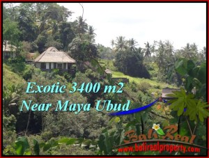 Affordable Ubud Tengkulak BALI LAND FOR SALE TJUB514