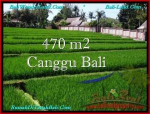 470 m2 LAND SALE IN Canggu Pererenan BALI TJCG187