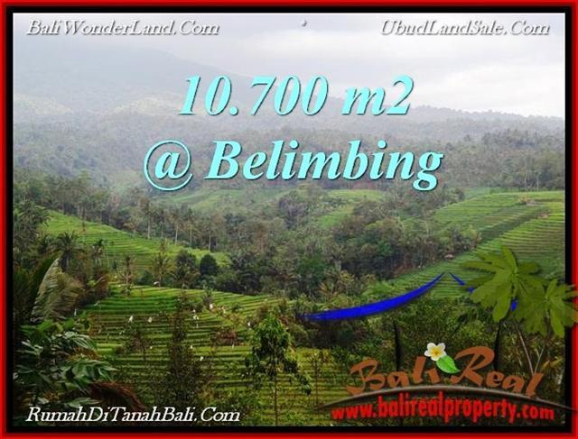 Exotic LAND SALE IN Tabanan Selemadeg BALI TJTB219