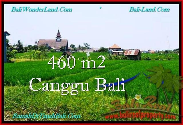 Beautiful PROPERTY 460 m2 LAND FOR SALE IN CANGGU BALI TJCG195