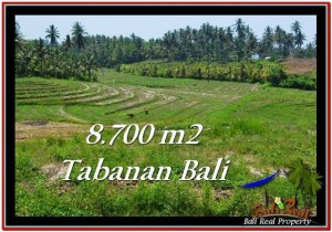 FOR SALE 8,700 m2 LAND IN TABANAN TJTB233