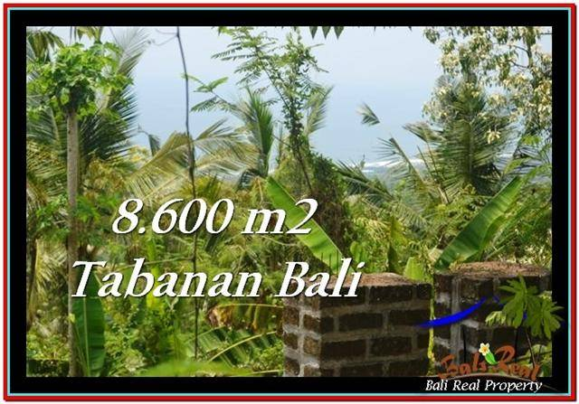 Affordable PROPERTY 8,600 m2 LAND SALE IN TABANAN BALI TJTB235