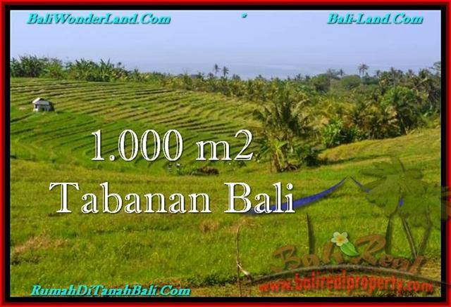Affordable PROPERTY 1,000 m2 LAND SALE IN TABANAN BALI TJTB237