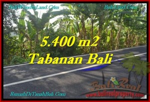 Beautiful TABANAN BALI 5,400 m2 LAND FOR SALE TJTB241