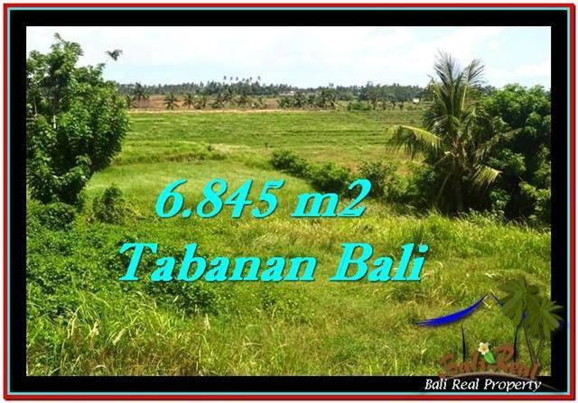 Affordable PROPERTY 6,845 m2 LAND SALE IN TABANAN BALI TJTB245
