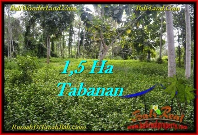 FOR SALE Affordable 15,550 m2 LAND IN TABANAN TJTB272