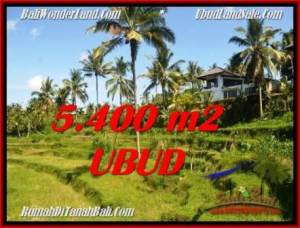 Exotic PROPERTY 5,400 m2 LAND IN Ubud Tegalalang FOR SALE TJUB550