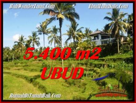FOR SALE Beautiful 5,400 m2 LAND IN UBUD BALI TJUB550