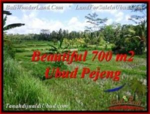 Beautiful 700 m2 LAND SALE IN UBUD BALI TJUB534