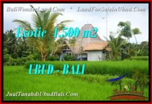 Magnificent 1,500 m2 LAND IN Ubud Pejeng FOR SALE TJUB541