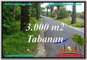 Beautiful TABANAN BALI 3,000 m2 LAND FOR SALE TJTB297