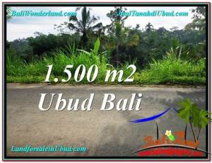 Ubud Tegalalang BALI LAND FOR SALE TJUB556