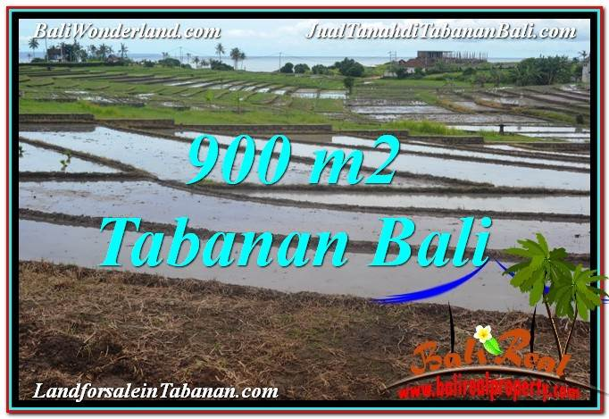 Magnificent 900 m2 LAND FOR SALE IN Tabanan Selemadeg TJTB308