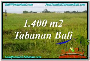 FOR SALE Magnificent LAND IN Tabanan Selemadeg TJTB309