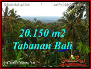 Beautiful PROPERTY 20,150 m2 LAND SALE IN TABANAN TJTB322