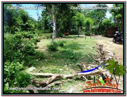 FOR SALE 513 m2 LAND IN Jimbaran Ungasan BALI TJJI105