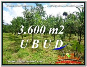 Affordable UBUD BALI 3,600 m2 LAND FOR SALE TJUB599