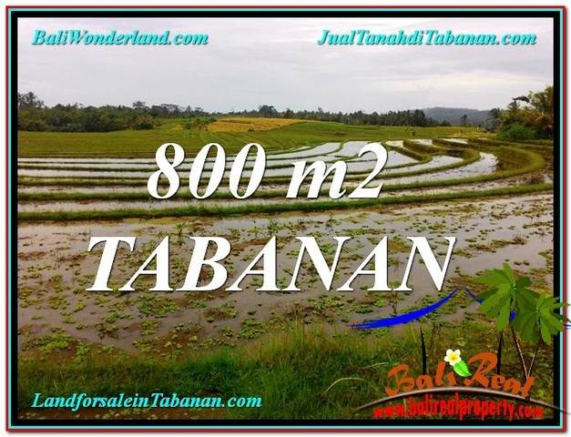 Exotic PROPERTY 800 m2 LAND FOR SALE IN TABANAN BALI TJTB324