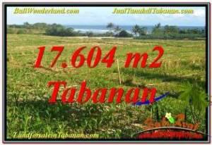 Beautiful PROPERTY TABANAN 17,604 m2 LAND FOR SALE TJTB342