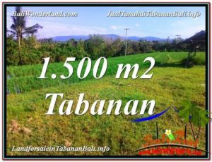 FOR SALE Exotic PROPERTY LAND IN TABANAN TJTB353