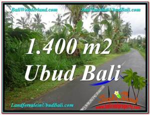 Magnificent PROPERTY LAND FOR SALE IN UBUD TJUB612