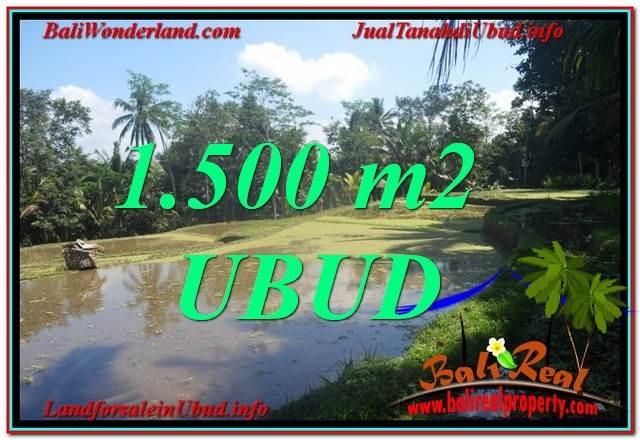 Beautiful 1,500 m2 LAND IN UBUD BALI FOR SALE TJUB630