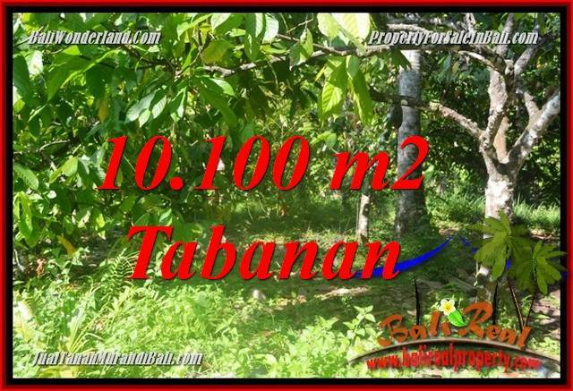 Exotic PROPERTY 10,100 m2 LAND IN TABANAN FOR SALE TJTB360