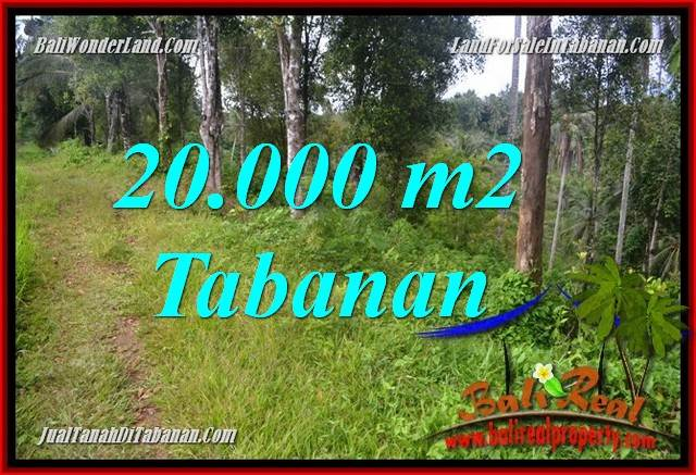 Exotic 20,000 m2 LAND IN Tabanan Selemadeg Timur FOR SALE TJTB365
