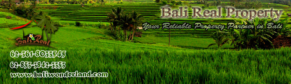 AFFORDABLE LAND IN UBUD FOR SALE , LAND IN CANGGU FOR SALE , AFFORDABLE LAND IN BALI FOR SALE IN JIMBARAN , LAND IN TABANAN BALI FOR SALE , PROPERTY INVESTMENT IN BALI , AFFORDABLE LAND IN UBUD BALI FOR SALE , LAND FOR SALE IN CANGGU BALI , AFFORDABLE LAND FOR SALE IN JIMBARAN BALI , LAND IN BALI FOR SALE IN TABANAN , AFFORDABLE PROPERTY IN BALI , AFFORDABLE LAND FOR SALE IN UBUD , LAND FOR SALE IN CANGGU , AFFORDABLE LAND IN JIMBARAN FOR SALE , LAND IN TABANAN FOR SALE , REAL ESTATE IN BALI , BALI LAND FOR SALE , BALI PROPERTY INVESTMENT