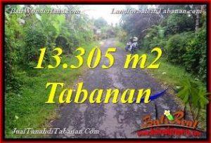 Beautiful PROPERTY Tabanan Selemadeg 13,305 m2 LAND FOR SALE TJTB367